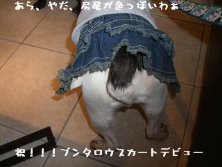 20060412104634.jpg