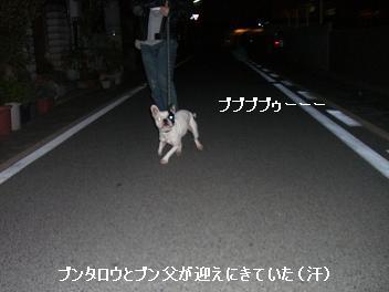 20060424093225.jpg