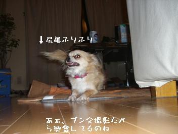 20060517194854.jpg