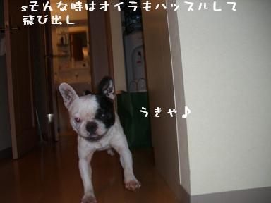 20060518110432.jpg