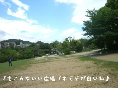 20060522104956.jpg