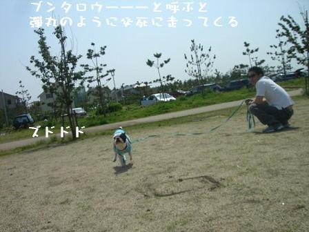 20060522161936.jpg