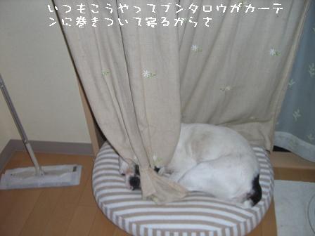 20060525115354.jpg