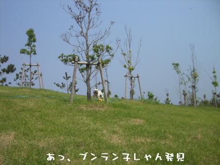 20060606112405.jpg