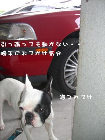 20060713105027.jpg