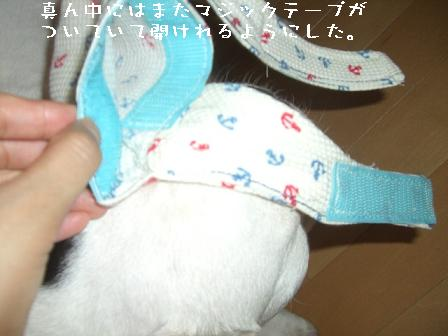 20060716124620.jpg