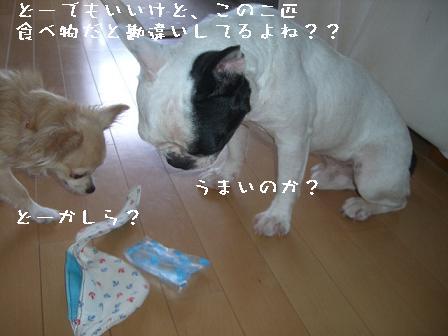 20060716124638.jpg