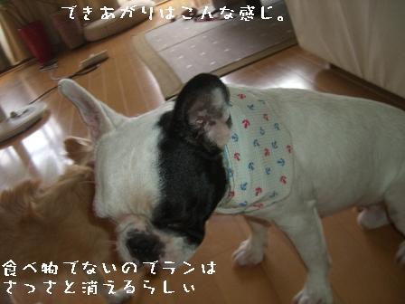 20060716124649.jpg