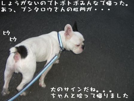 20060720161508.jpg