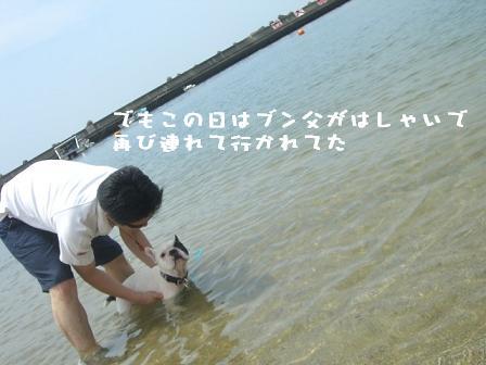 20060724131919.jpg