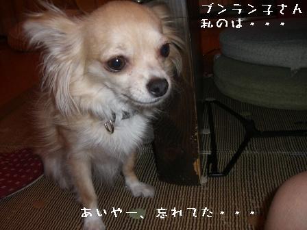 20060804114352.jpg