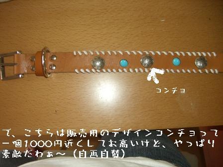 20060805105045.jpg
