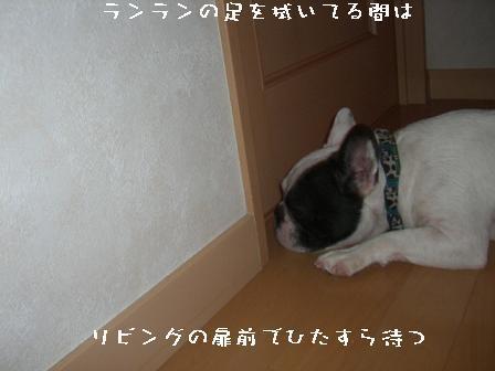 20060806203821.jpg
