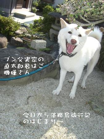 20060816113057.jpg