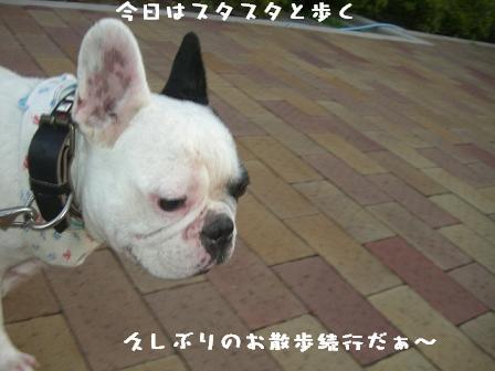 20060901111052.jpg