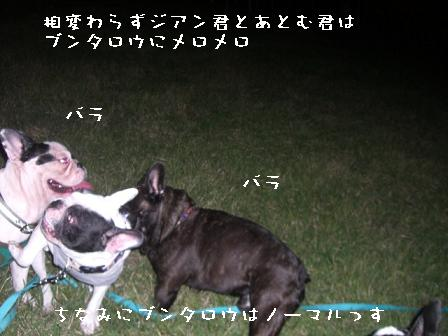 20060910133806.jpg