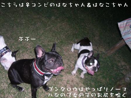 20060910133840.jpg