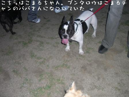 20060910133907.jpg