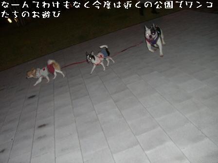 20060911111831.jpg