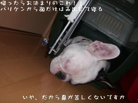 20060917091154.jpg