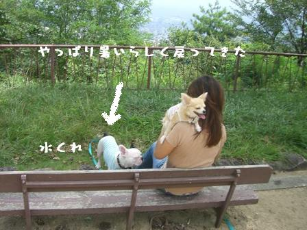 20060919110516.jpg
