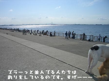 20060925111514.jpg