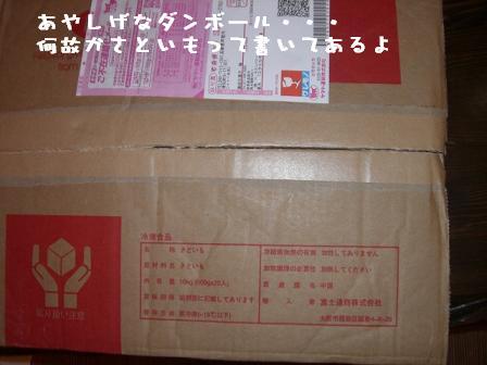 20060928111501.jpg