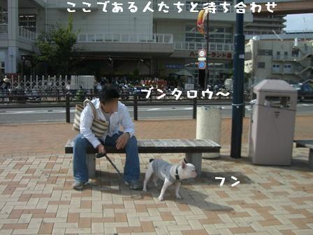 20061012122649.jpg