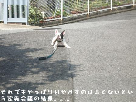 20061017105943.jpg