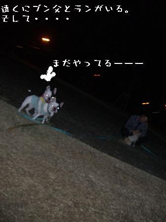 20061025115149.jpg