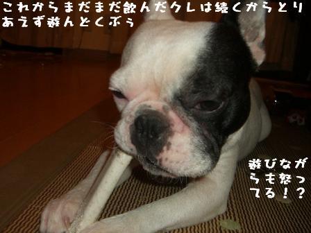 20061101114341.jpg