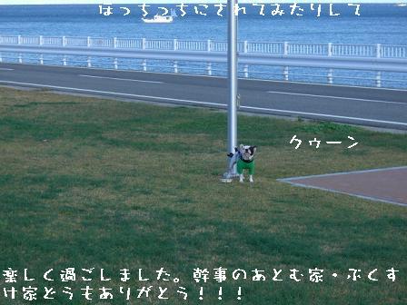 20061115114658.jpg