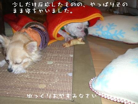 20061127220641.jpg