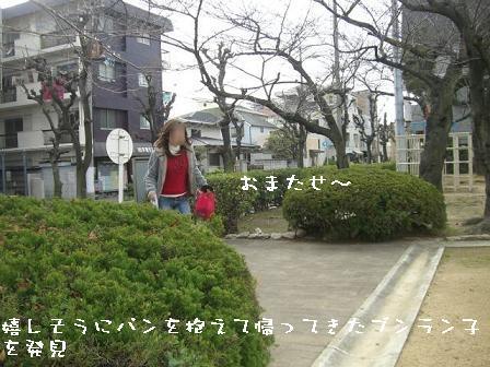 20070320113145.jpg