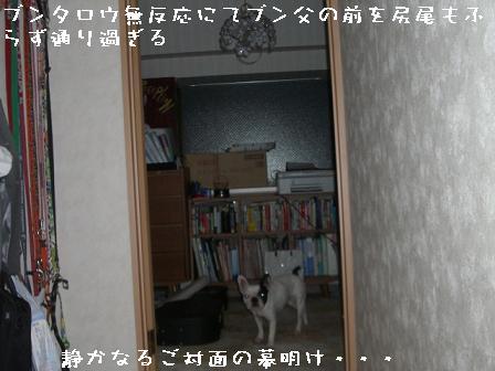 20070513082408.jpg