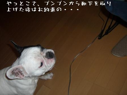 20070520100323.jpg