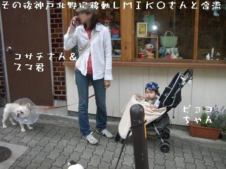 20070610104336.jpg
