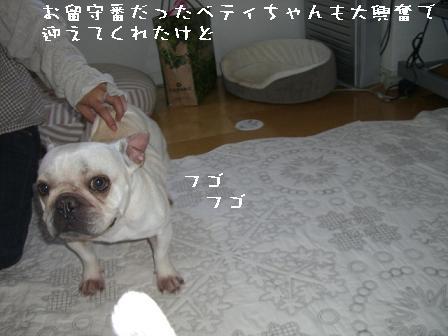 20070611110454.jpg