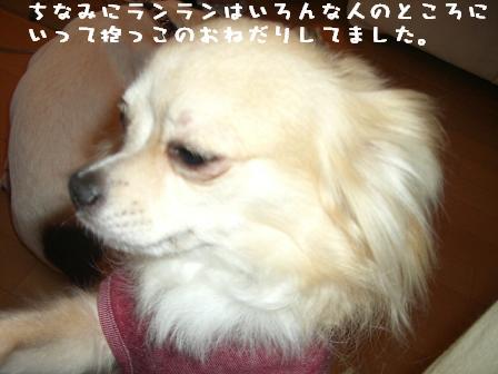 20070702111945.jpg