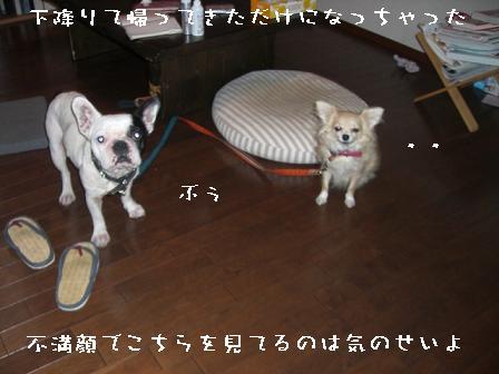 20070906134840.jpg