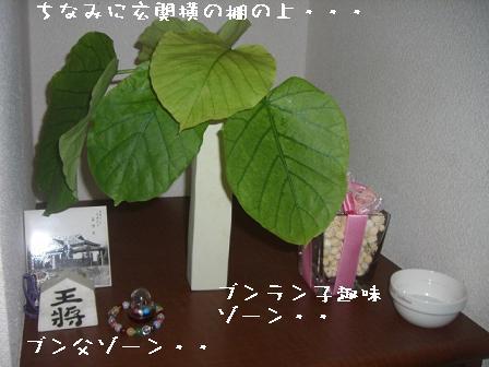 20070907203603.jpg