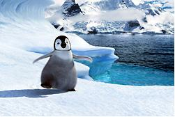 happy feet2