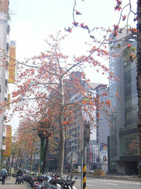 0903mianshu.jpg