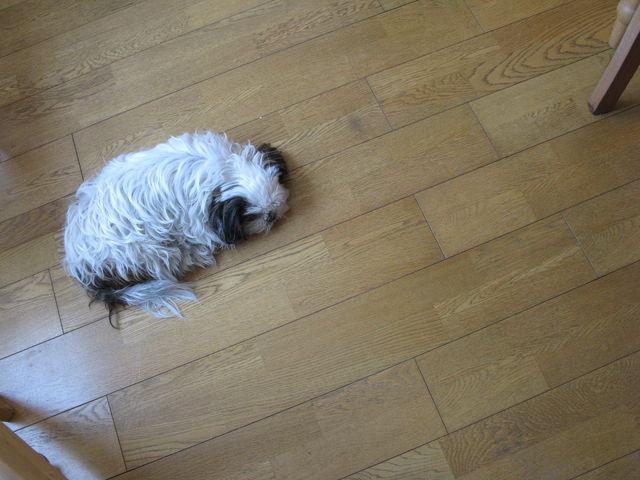 床でマリリン