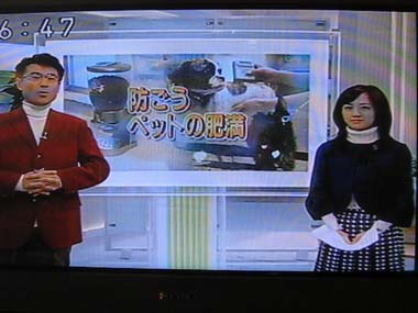 おはよう日本1
