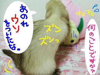 DSCF0711.jpg