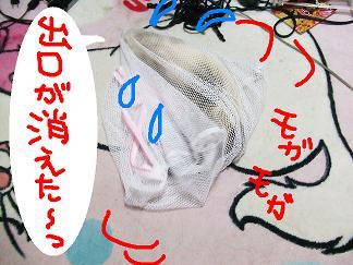 DSCF0819.jpg