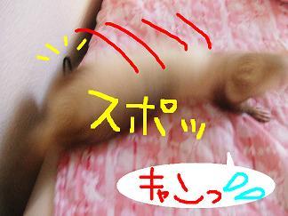 DSCF0918.jpg