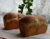 はちみつミニ食パン