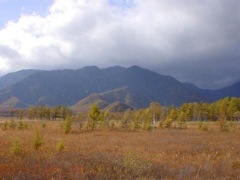 秋の戦場ヶ原はキラキラと輝いて